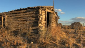 Nevada_log_cabin_ruin_s-3022012-23-1631